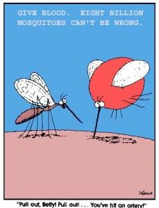 Mosquito Swatting Championships
